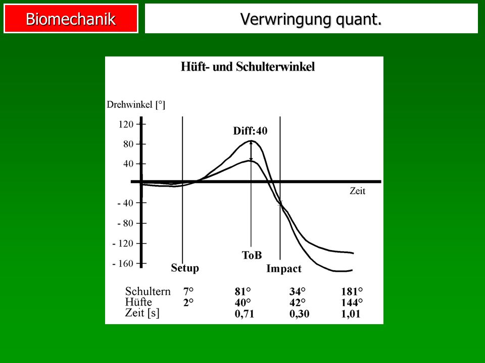 Biomechanik Verwringung quant.