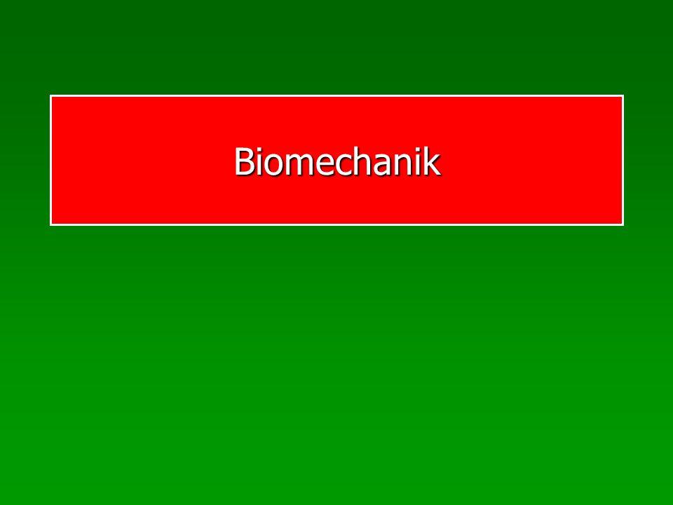 Biomechanik Die biomechanischen Prinzipien 1.Prinzip der Anfangskraft 2.Prinzip des optimalen Beschleunigungsweges 3.Prinzip der optimalen Tendenz im Beschleunigungsverlauf 4.Prinzip der zeitlichen Koordination von Teilimpulsen 5.Prinzip der Impulserhaltung 6.Prinzip der Gegenwirkung