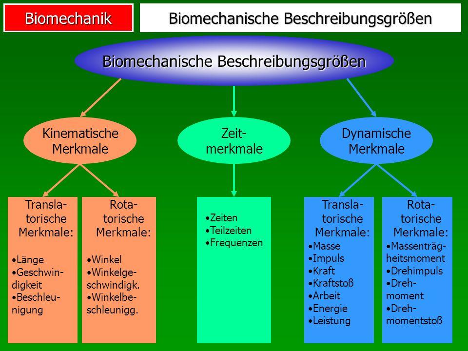 Biomechanik Biomechanische Beschreibungsgrößen Kinematische Merkmale Dynamische Merkmale Zeit- merkmale Transla- torische Merkmale: Länge Geschwin- di