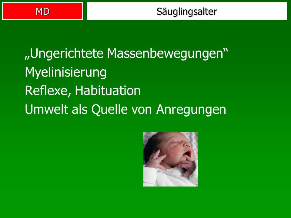 MDSäuglingsalter Ungerichtete Massenbewegungen Myelinisierung Reflexe, Habituation Umwelt als Quelle von Anregungen