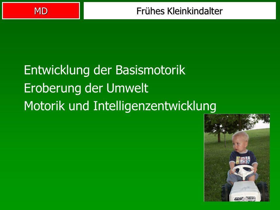 MD Frühes Kleinkindalter Entwicklung der Basismotorik Eroberung der Umwelt Motorik und Intelligenzentwicklung