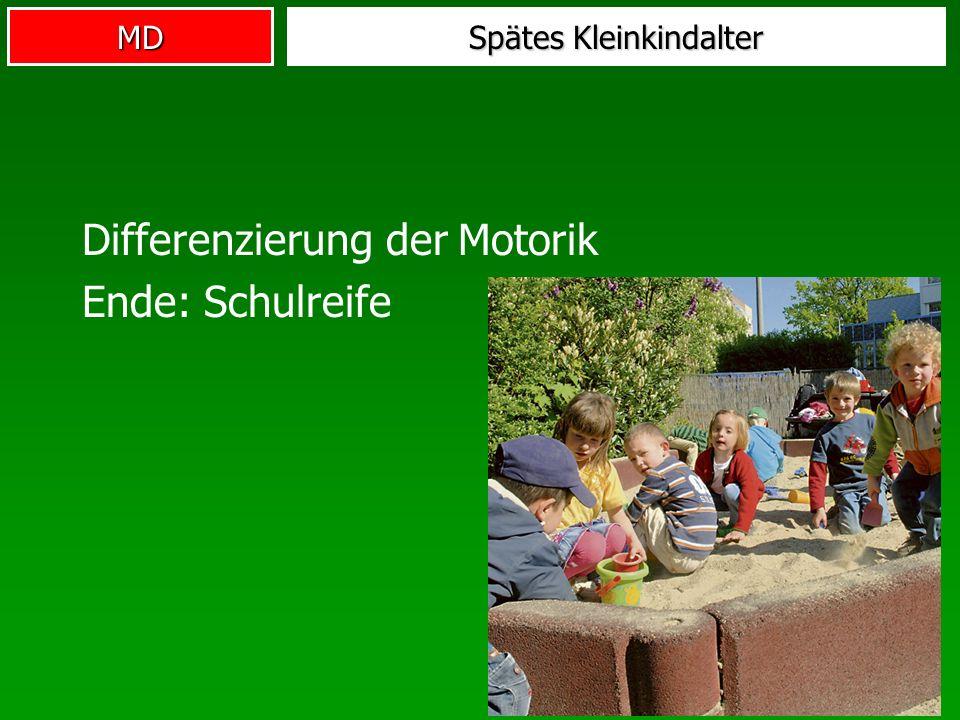 MD Spätes Kleinkindalter Differenzierung der Motorik Ende: Schulreife