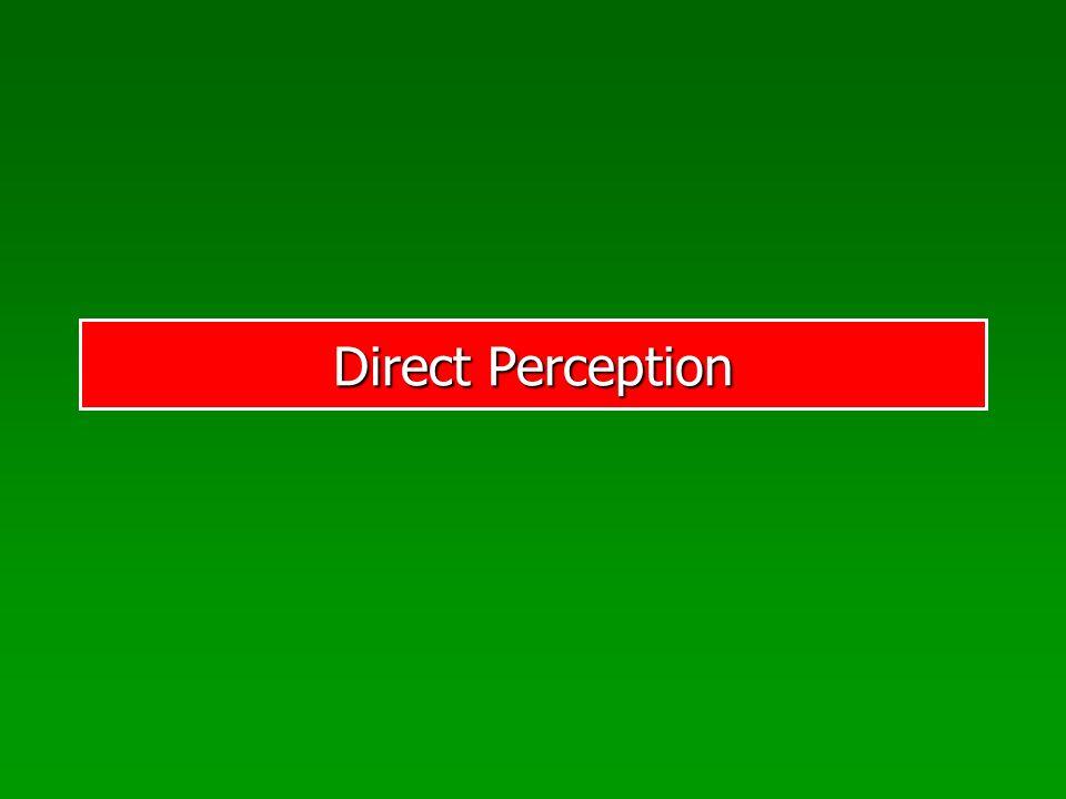 Direct Perception