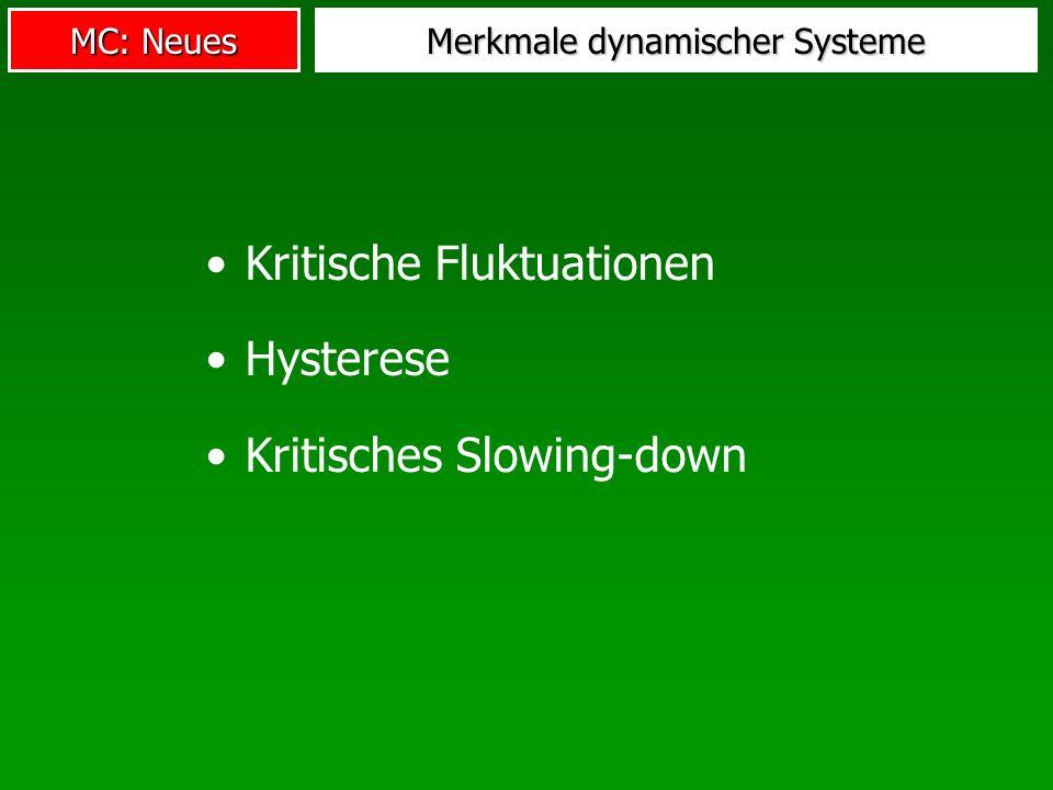 MC: Neues Merkmale dynamischer Systeme Kritische Fluktuationen Hysterese Kritisches Slowing-down
