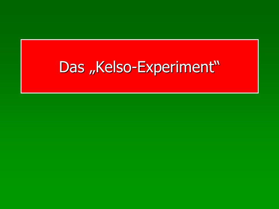 Das Kelso-Experiment