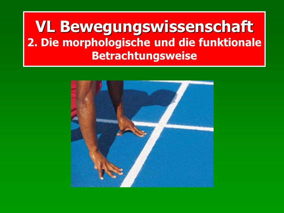VL Bewegungswissenschaft VL Bewegungswissenschaft 2. Die morphologische und die funktionale Betrachtungsweise