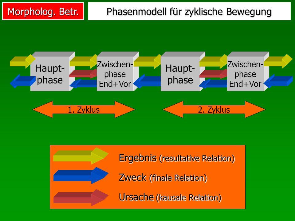 Morpholog. Betr. Phasenmodell für zyklische Bewegung Haupt- phase Zwischen- phase End+Vor 1. Zyklus2. Zyklus Haupt- phase Zwischen- phase End+Vor Zwec