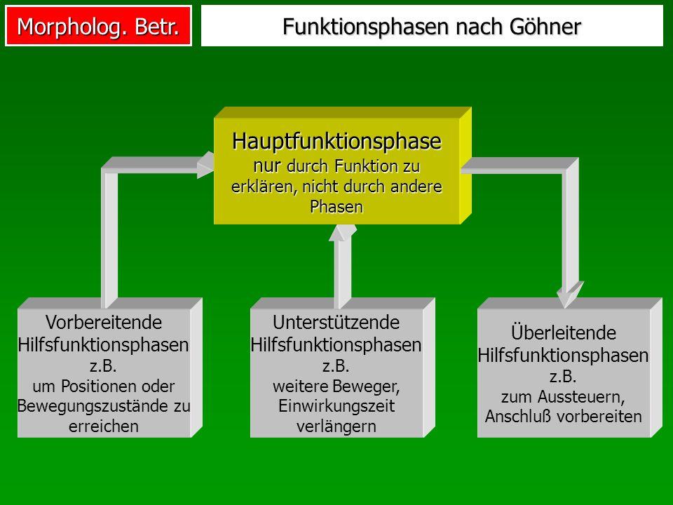 Morpholog.Betr. Funktionsphasen nach Göhner Unterstützende Hilfsfunktionsphasen z.B.