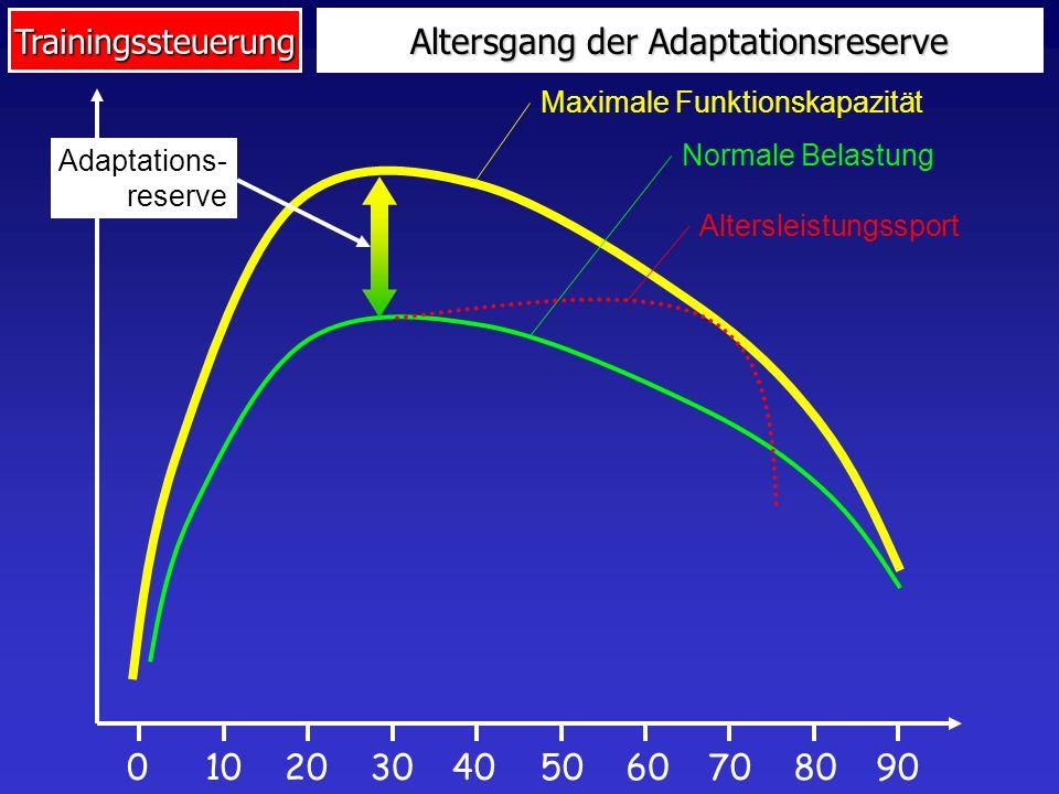 Trainingssteuerung Altersgang der Adaptationsreserve 0104020307080905060 Maximale Funktionskapazität Normale Belastung Altersleistungssport Adaptation