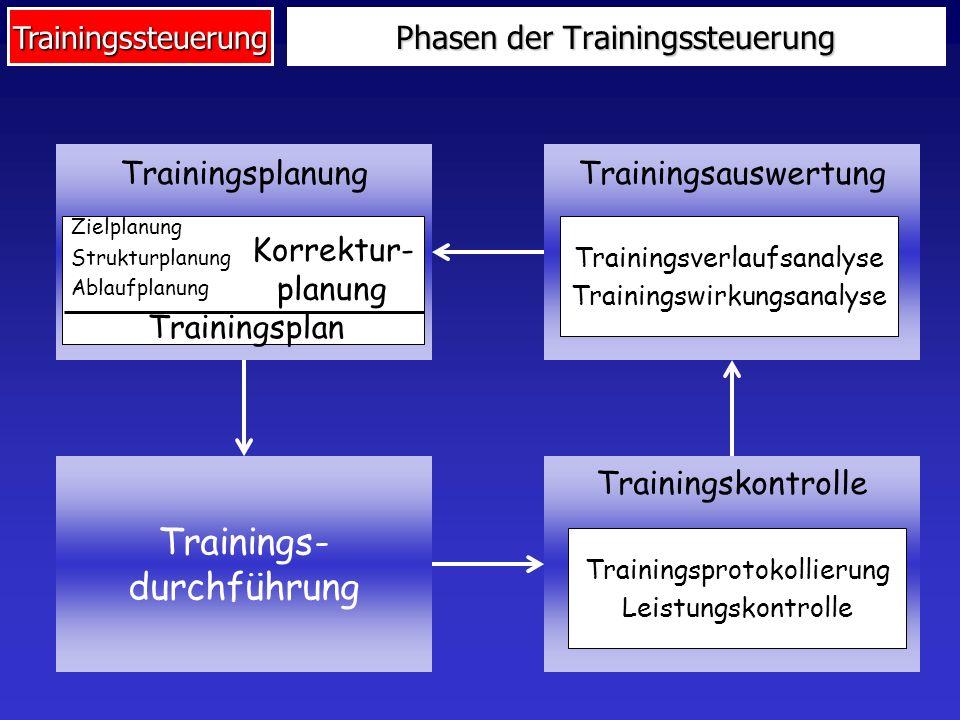 Trainingssteuerung Phasen der Trainingssteuerung TrainingsplanungTrainingsauswertung Trainings- durchführung Trainingskontrolle Zielplanung Strukturpl