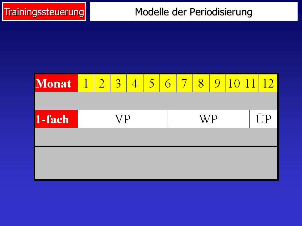 Trainingssteuerung Modelle der Periodisierung