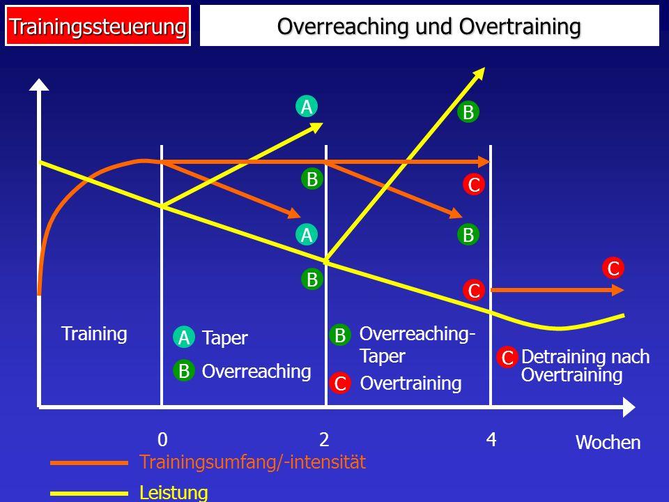 Trainingssteuerung Overreaching und Overtraining 024 Wochen Training Trainingsumfang/-intensität Leistung A A Taper A B B B Overreaching Overreaching-