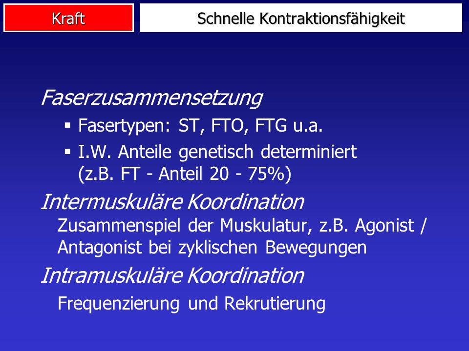 Kraft Faserzusammensetzung Fasertypen: ST, FTO, FTG u.a. I.W. Anteile genetisch determiniert (z.B. FT - Anteil 20 - 75%) Intermuskuläre Koordination Z