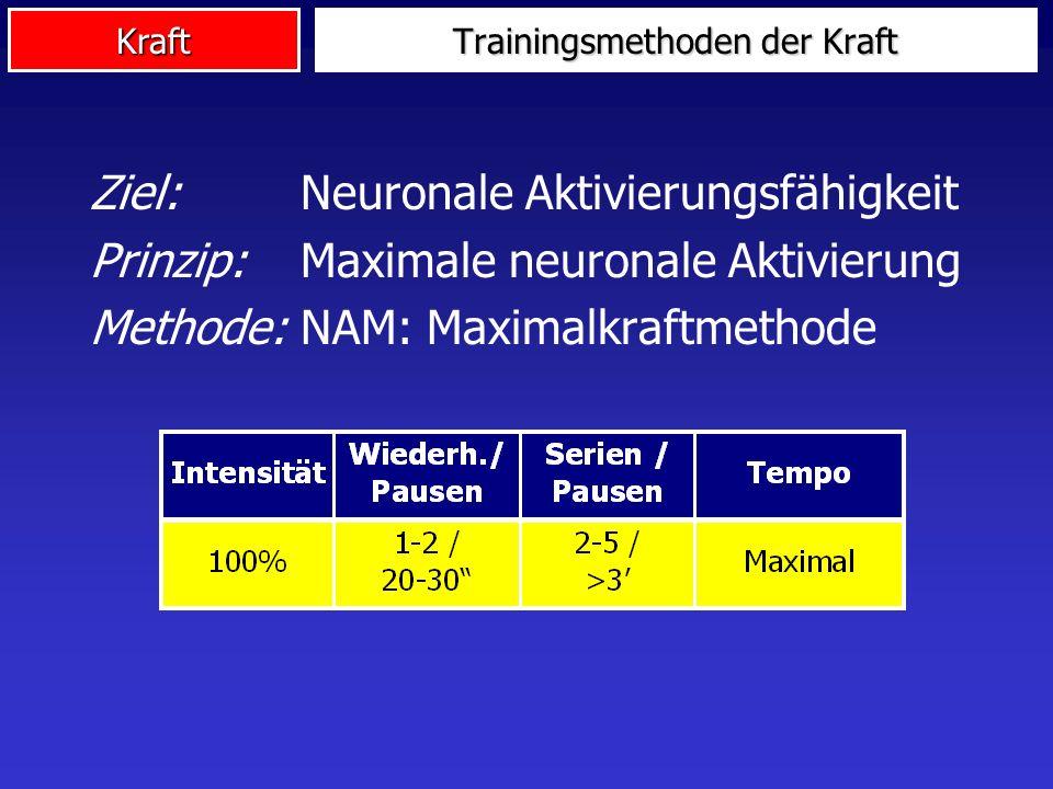 Kraft Trainingsmethoden der Kraft Ziel: Neuronale Aktivierungsfähigkeit Prinzip: Maximale neuronale Aktivierung Methode: NAM: Maximalkraftmethode