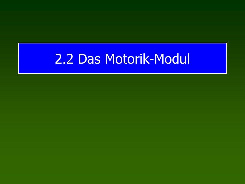 2.2 Das Motorik-Modul