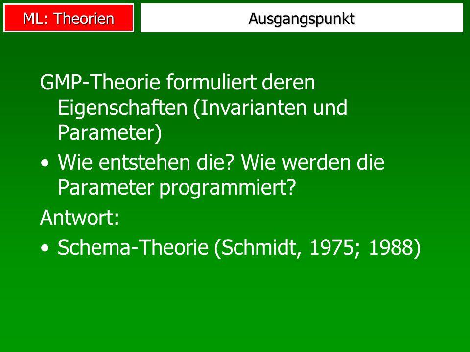 ML: Theorien Ausgangspunkt GMP-Theorie formuliert deren Eigenschaften (Invarianten und Parameter) Wie entstehen die? Wie werden die Parameter programm