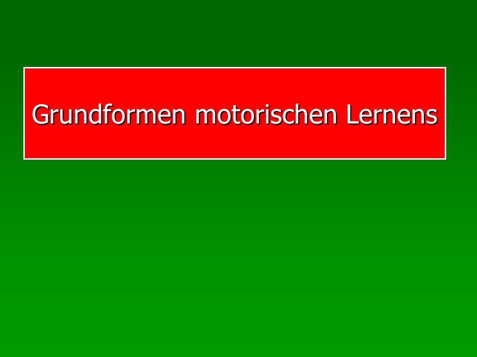 ML: Theorien Motor response scheme: Basketball Entfernung Krafteinsatz Einzelner Versuch Schema