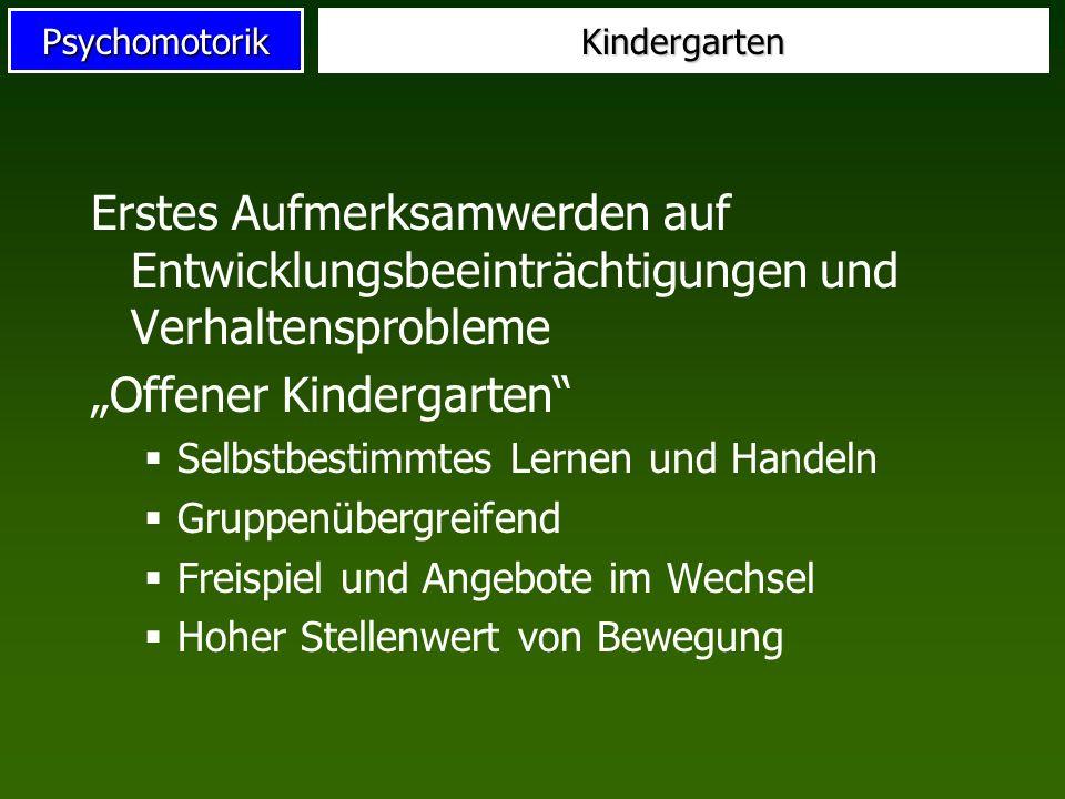 PsychomotorikKindergarten Erstes Aufmerksamwerden auf Entwicklungsbeeinträchtigungen und Verhaltensprobleme Offener Kindergarten Selbstbestimmtes Lern