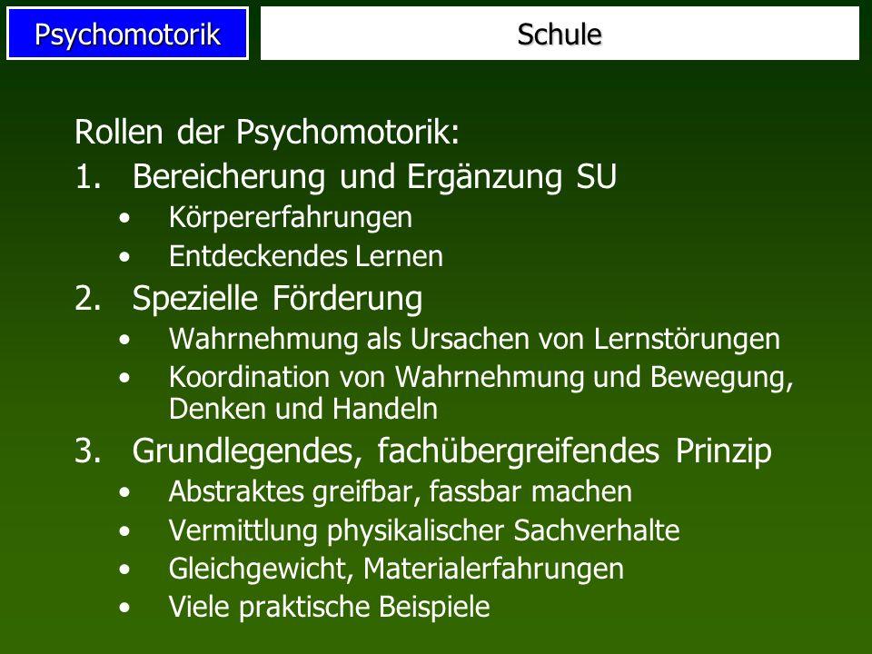 PsychomotorikSchule Rollen der Psychomotorik: 1.Bereicherung und Ergänzung SU Körpererfahrungen Entdeckendes Lernen 2.Spezielle Förderung Wahrnehmung