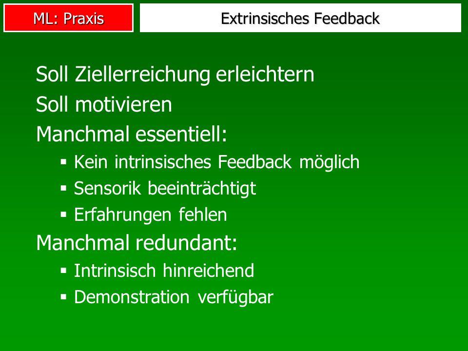 ML: Praxis Extrinsisches Feedback Soll Ziellerreichung erleichtern Soll motivieren Manchmal essentiell: Kein intrinsisches Feedback möglich Sensorik beeinträchtigt Erfahrungen fehlen Manchmal redundant: Intrinsisch hinreichend Demonstration verfügbar
