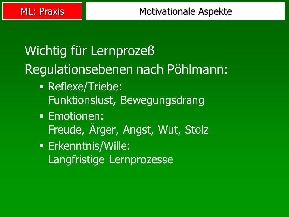 ML: Praxis Motivationale Aspekte Wichtig für Lernprozeß Regulationsebenen nach Pöhlmann: Reflexe/Triebe: Funktionslust, Bewegungsdrang Emotionen: Freu