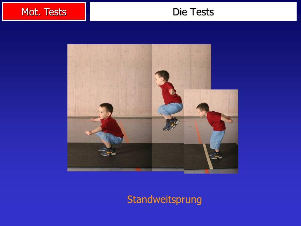 Mot. Tests Die Tests Standweitsprung