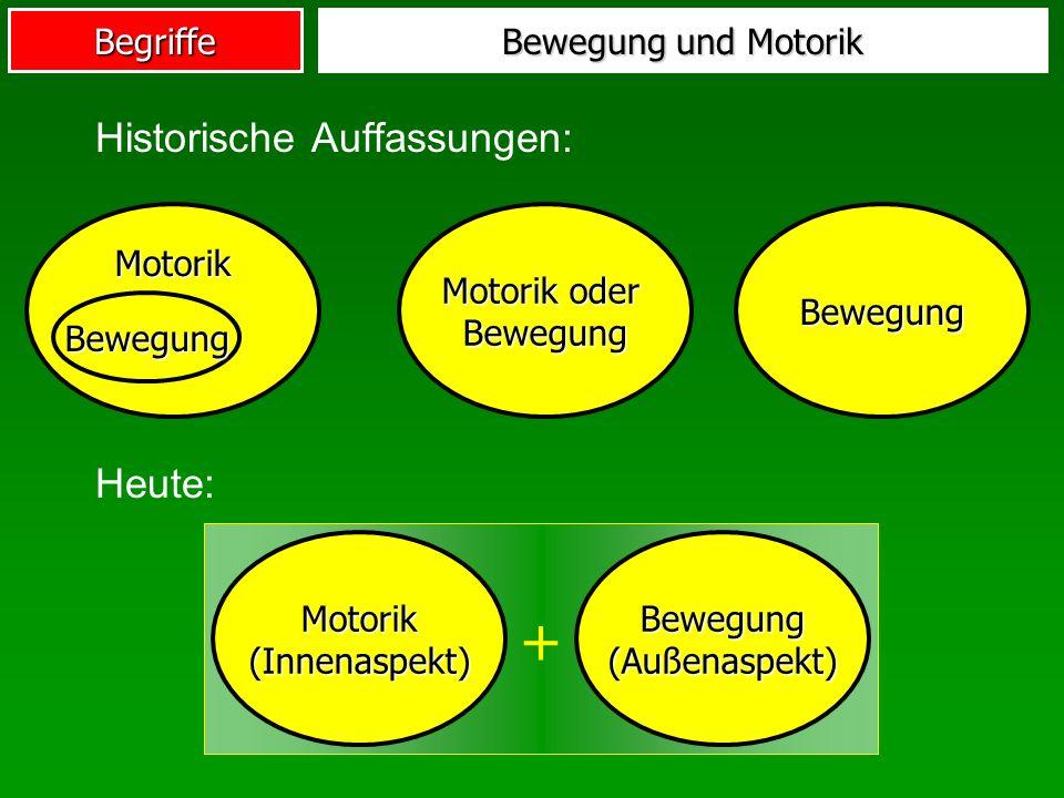 Begriffe Bewegung und Motorik Historische Auffassungen: Motorik oder Bewegung Motorik Bewegung Bewegung Heute: + Motorik (Innenaspekt) Bewegung (Außen