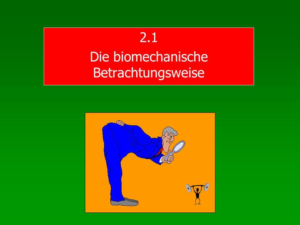 2.1 Die biomechanische Betrachtungsweise