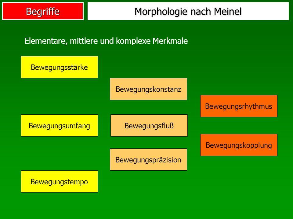 Begriffe Morphologie nach Meinel Bewegungsstärke Bewegungsumfang Bewegungstempo Bewegungskonstanz Bewegungsrhythmus Bewegungspräzision Bewegungsfluß B