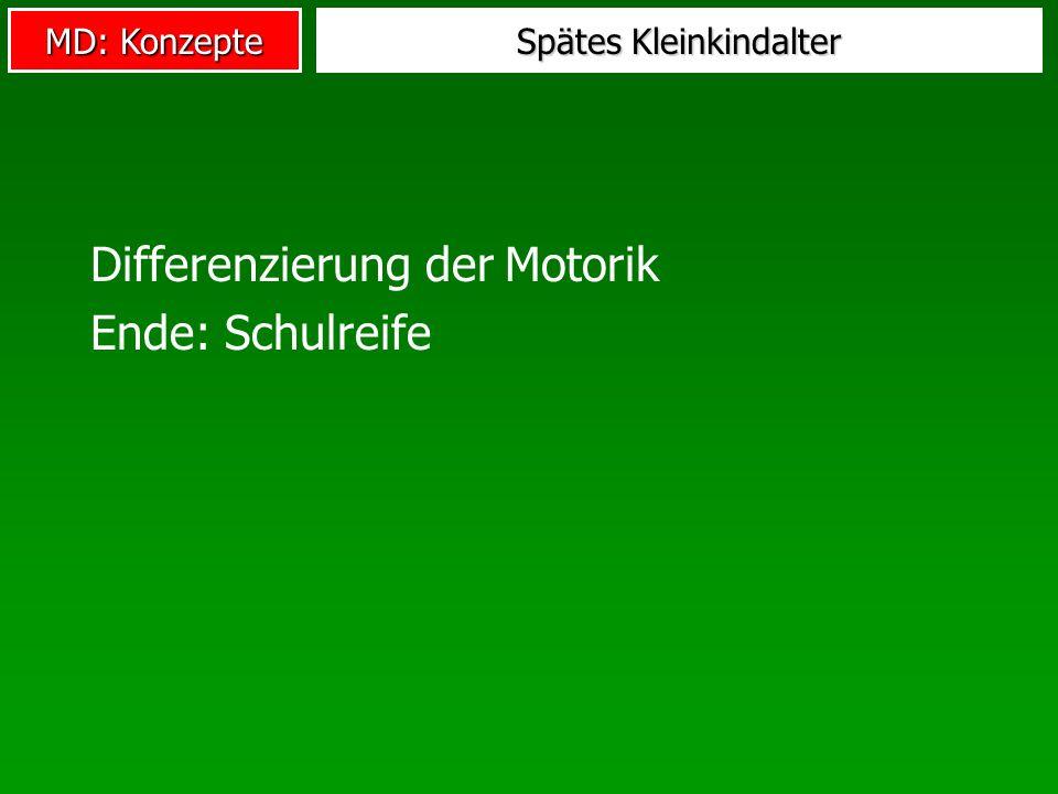 MD: Konzepte Spätes Kleinkindalter Differenzierung der Motorik Ende: Schulreife