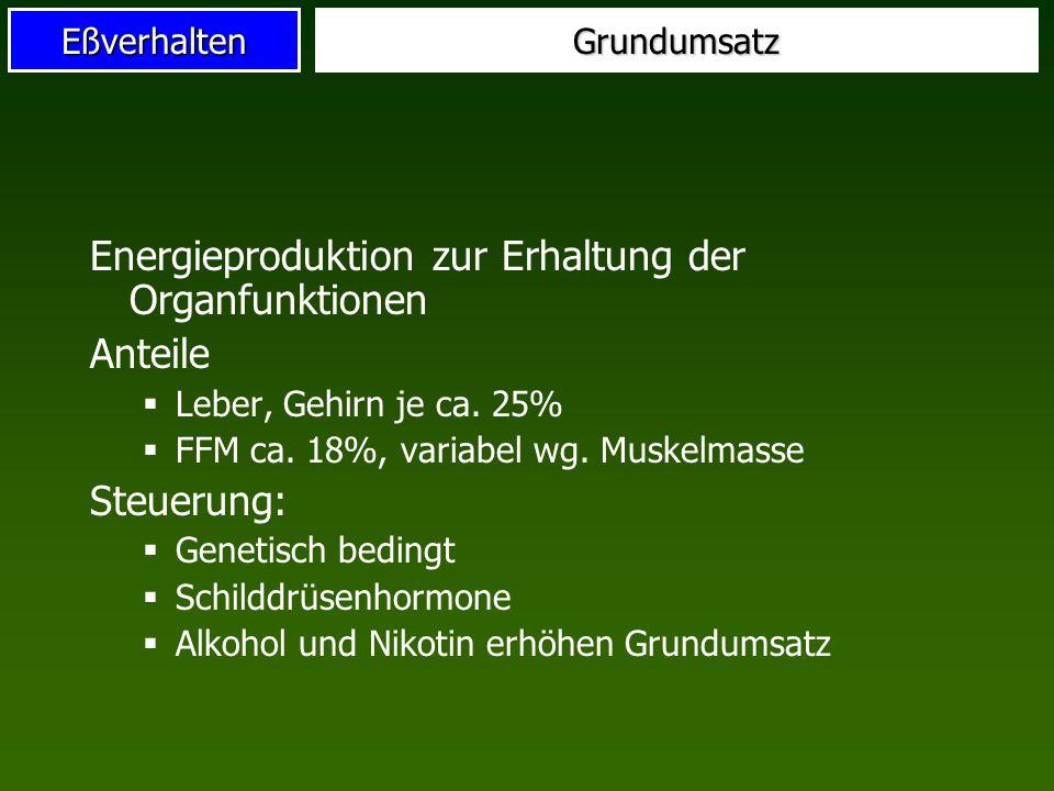 EßverhaltenGrundumsatz Energieproduktion zur Erhaltung der Organfunktionen Anteile Leber, Gehirn je ca. 25% FFM ca. 18%, variabel wg. Muskelmasse Steu