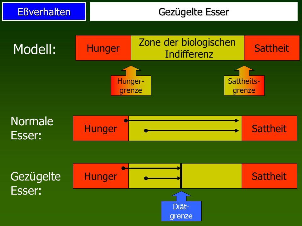 Eßverhalten Gezügelte Esser Hunger Zone der biologischen Indifferenz Sattheit Hunger- grenze Sattheits- grenze Modell: Normale Esser: HungerSattheit G