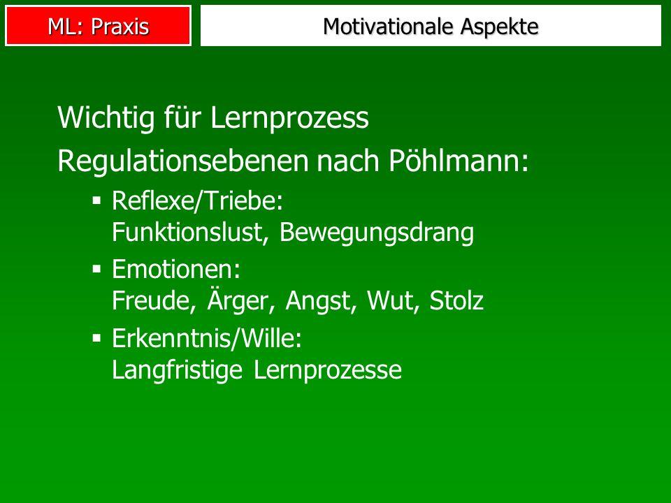 ML: Praxis Motivationale Aspekte Wichtig für Lernprozess Regulationsebenen nach Pöhlmann: Reflexe/Triebe: Funktionslust, Bewegungsdrang Emotionen: Fre