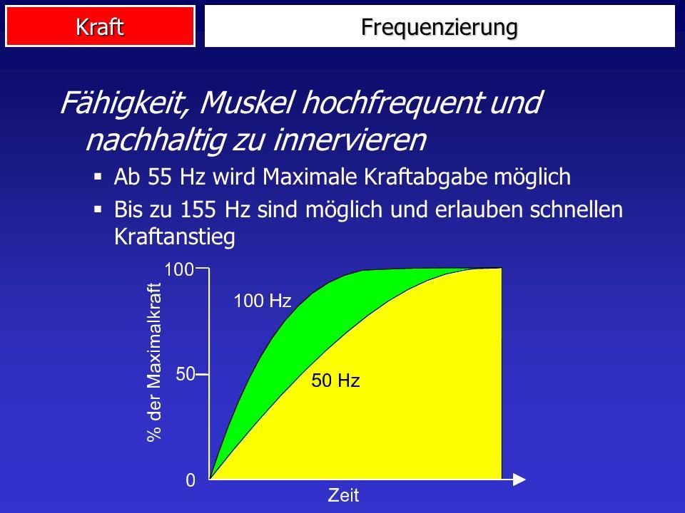 Kraft Fähigkeit, Muskel hochfrequent und nachhaltig zu innervieren Ab 55 Hz wird Maximale Kraftabgabe möglich Bis zu 155 Hz sind möglich und erlauben