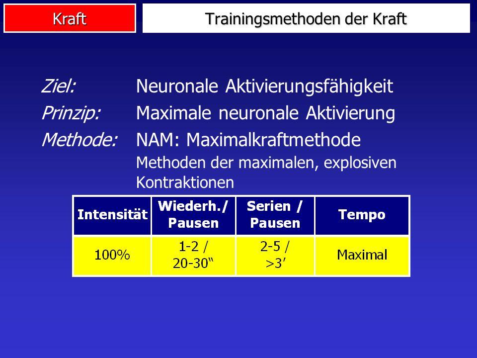 Kraft Trainingsmethoden der Kraft Ziel: Neuronale Aktivierungsfähigkeit Prinzip: Maximale neuronale Aktivierung Methode: NAM: Maximalkraftmethode Meth