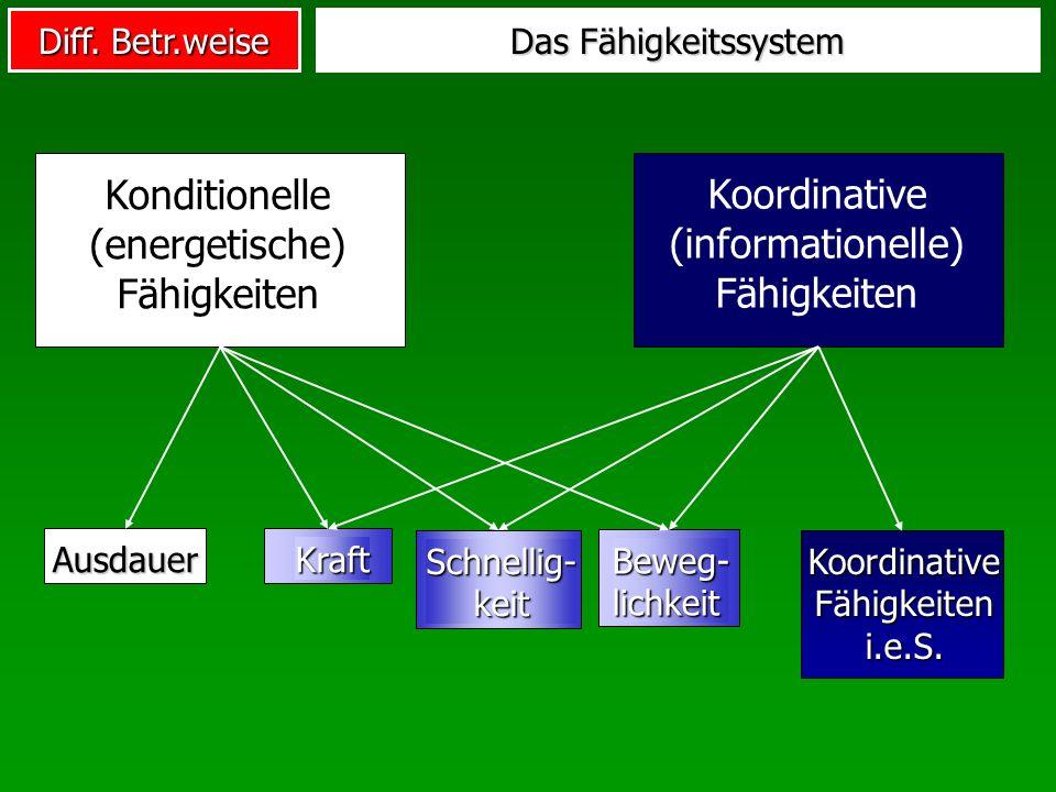 Diff. Betr.weise Das Fähigkeitssystem Konditionelle (energetische) Fähigkeiten Koordinative (informationelle) Fähigkeiten Ausdauer KoordinativeFähigke