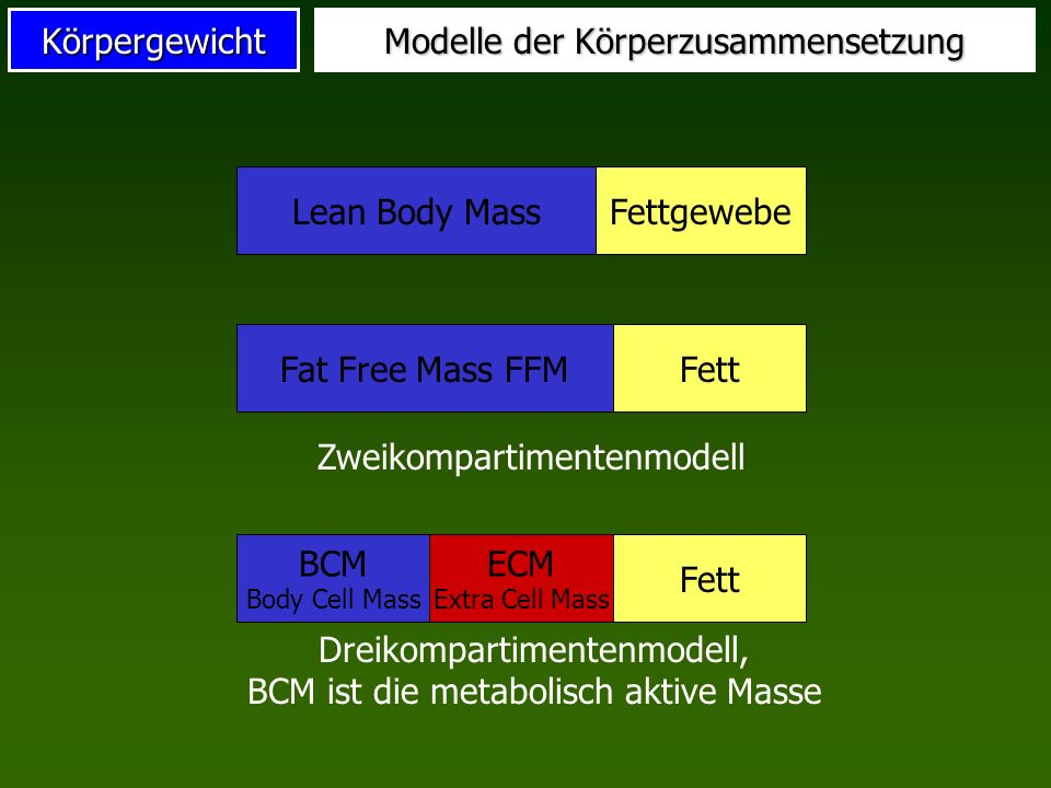 Körpergewicht Modelle der Körperzusammensetzung Lean Body MassFettgewebeFat Free Mass FFMFett Zweikompartimentenmodell BCM Body Cell Mass Fett ECM Ext