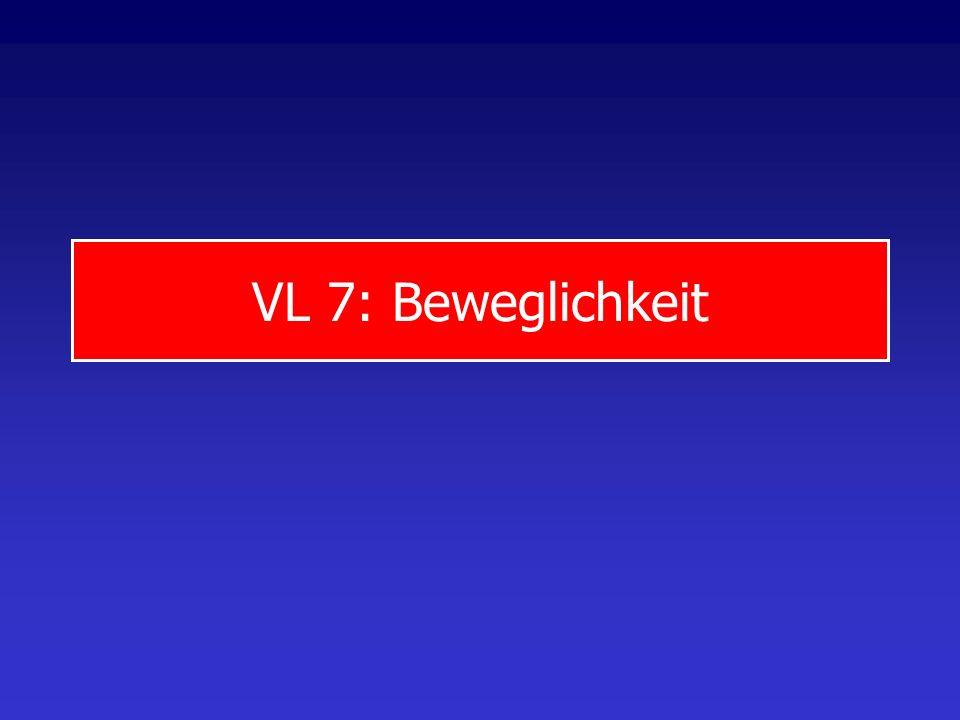 VL 7: Beweglichkeit