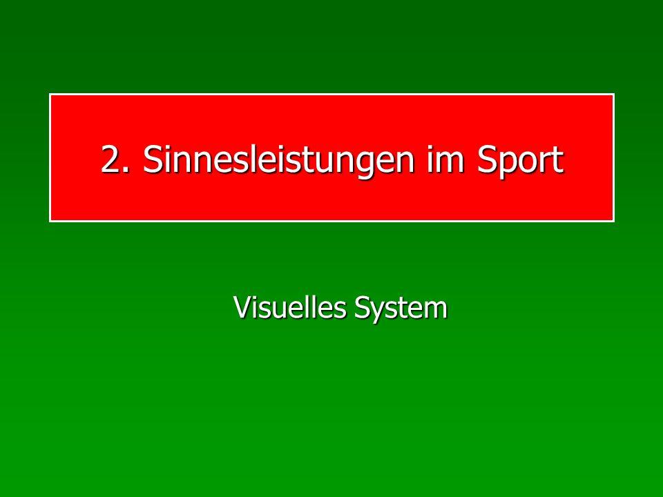 2. Sinnesleistungen im Sport Visuelles System