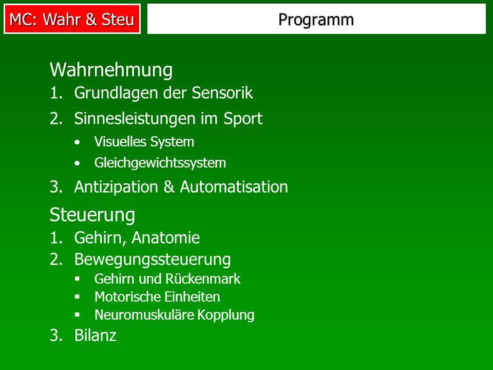 MC: Wahr & Steu Programm Wahrnehmung 1.Grundlagen der Sensorik 2.Sinnesleistungen im Sport Visuelles System Gleichgewichtssystem 3.Antizipation & Auto