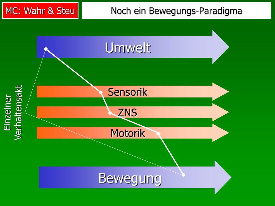 MC: Wahr & Steu Noch ein Bewegungs-Paradigma UmweltBewegung SensorikMotorik ZNS Einzelner Verhaltensakt