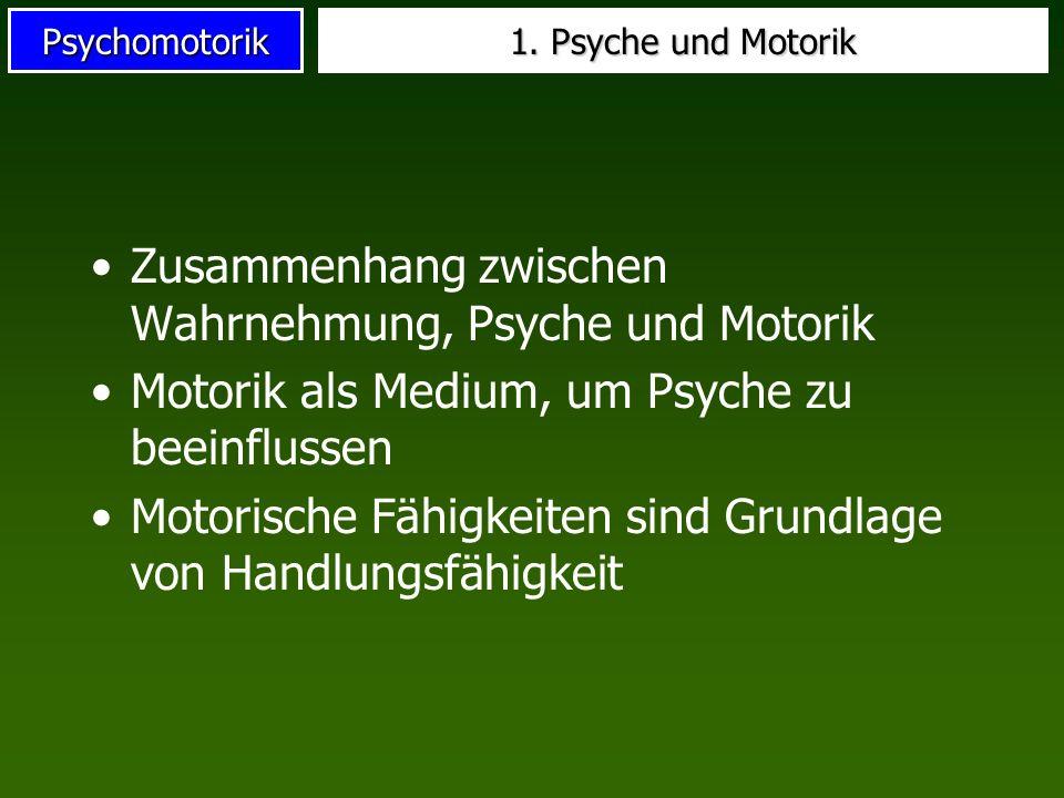 Psychomotorik 1. Psyche und Motorik Zusammenhang zwischen Wahrnehmung, Psyche und Motorik Motorik als Medium, um Psyche zu beeinflussen Motorische Fäh