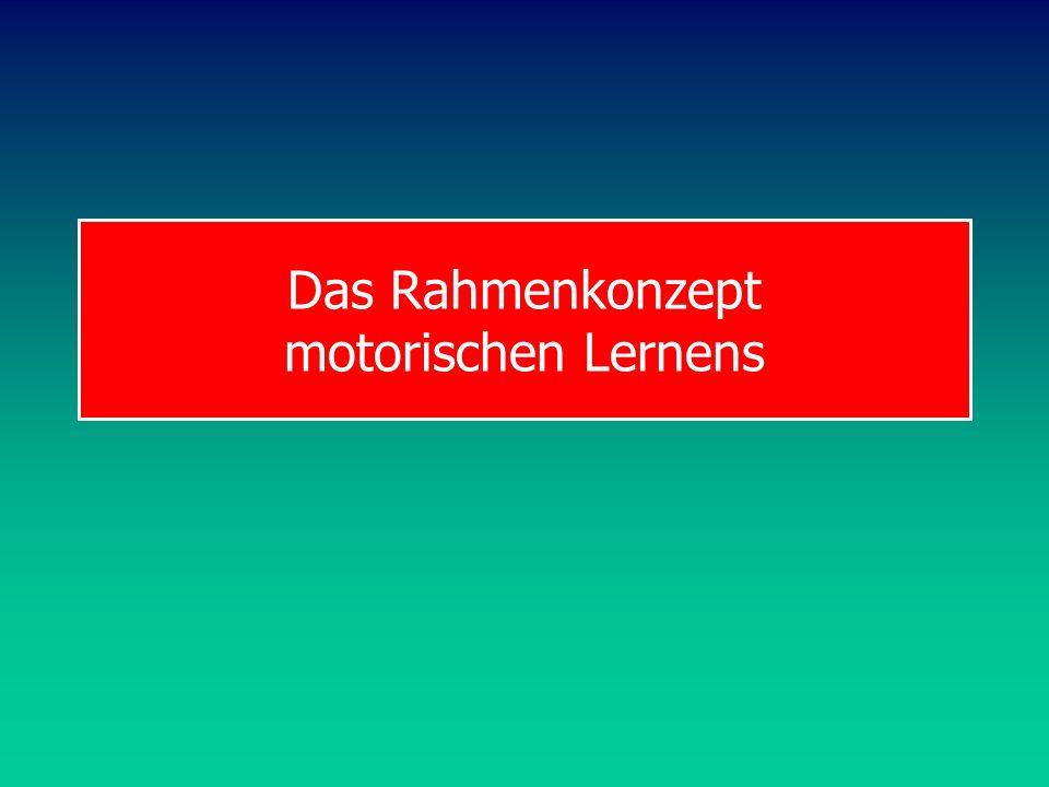 Das Rahmenkonzept motorischen Lernens