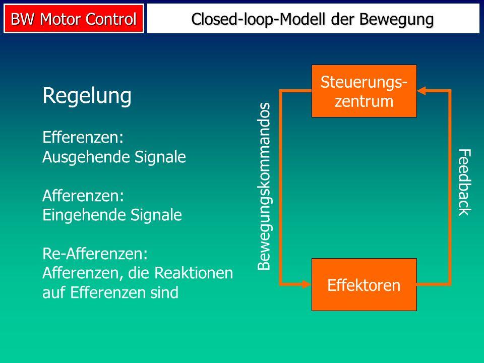 BW Motor Control Closed-loop-Modell der Bewegung Steuerungs- zentrum Effektoren Bewegungskommandos Feedback Regelung Efferenzen: Ausgehende Signale Af
