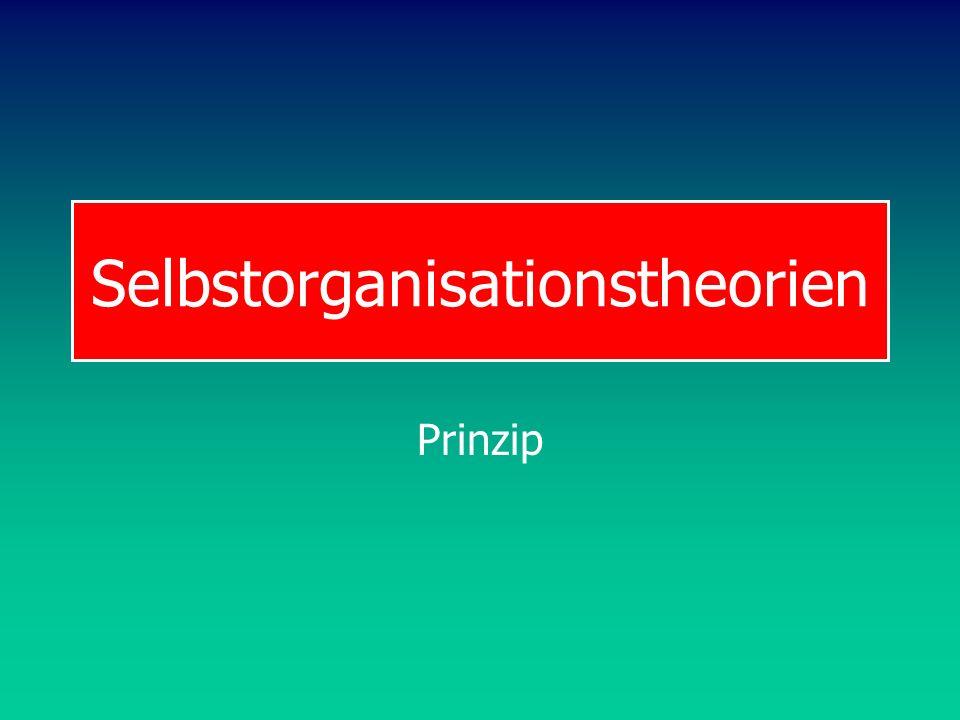 Selbstorganisationstheorien Prinzip