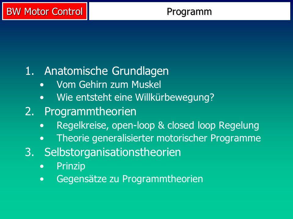 BW Motor Control Programm 1.Anatomische Grundlagen Vom Gehirn zum Muskel Wie entsteht eine Willkürbewegung? 2.Programmtheorien Regelkreise, open-loop