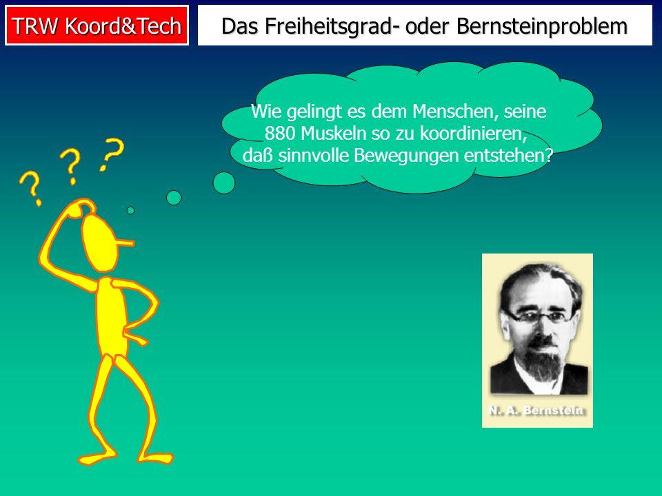 TRW Koord&Tech Das Freiheitsgrad- oder Bernsteinproblem Wie gelingt es dem Menschen, seine 880 Muskeln so zu koordinieren, daß sinnvolle Bewegungen en