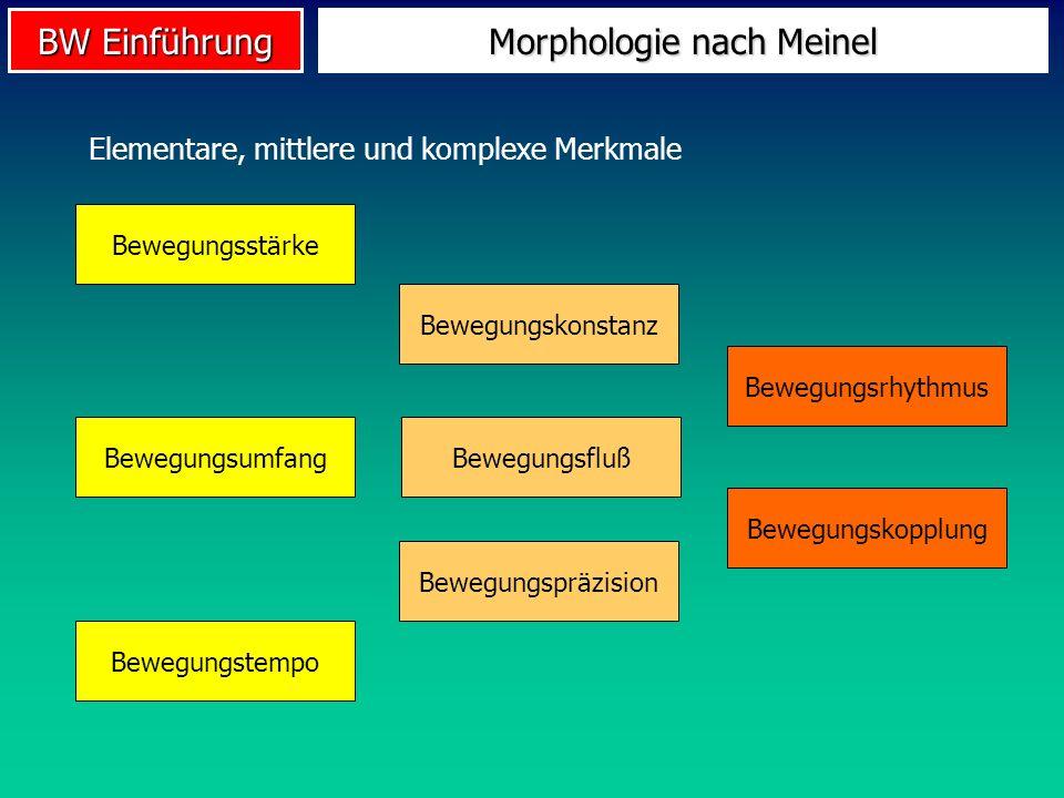 BW Einführung Morphologie nach Meinel Bewegungsstärke Bewegungsumfang Bewegungstempo Bewegungskonstanz Bewegungsrhythmus Bewegungspräzision Bewegungsf