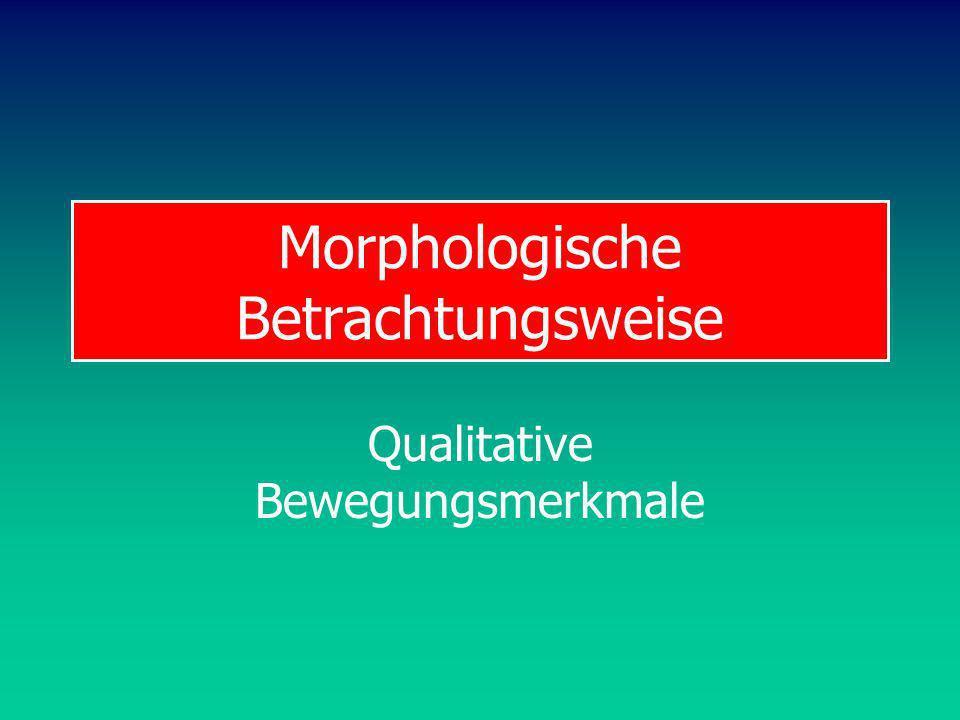 BW Diagnostik Beurteilung von Bewegungen Beurteilung von Bewegungen sind das Kerngeschäft des Sportlehrers: Zweck Bewertung Zweck Rückmeldung Beurteilung aus ganzheitlicher, subjektiver Sicht ist Basismethode des morphologischen Ansatzes.