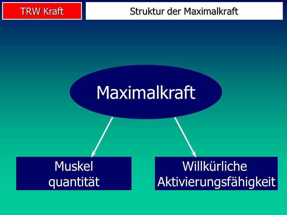 TRW Kraft Maximalkraft Muskel quantität Willkürliche Aktivierungsfähigkeit Struktur der Maximalkraft